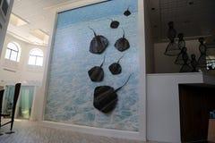大开曼Island_Grand大鳄鱼万豪在七英里的海滩胜地海滩在乔治城 免版税库存图片
