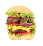 大开胃快餐汉堡包。 免版税库存图片