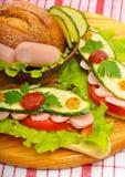 大开胃快餐长方形宝石三明治用莴苣,蕃茄 免版税图库摄影