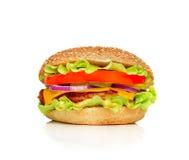 大开胃汉堡包 库存图片