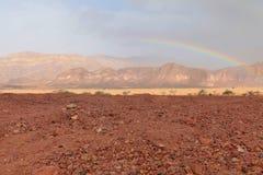 大彩虹在沙漠,以色列 免版税图库摄影