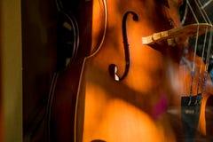 大提琴小提琴身体 免版税图库摄影