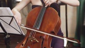 大提琴球员 弹有弓的大提琴手手大提琴 ?? 股票录像