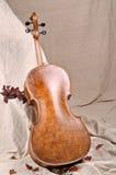 大提琴返回 免版税库存图片