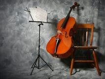 大提琴音乐会 免版税库存照片