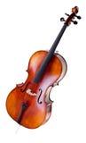 大提琴 库存图片