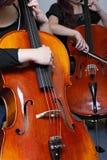 大提琴pizzicato 免版税库存照片