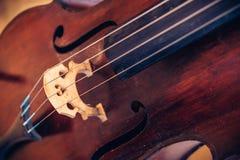 大提琴串 库存照片