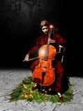 大提琴手 库存照片