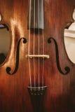 大提琴特写镜头  库存图片