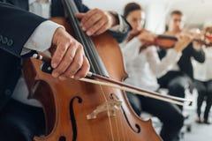 大提琴球员的手关闭  库存照片
