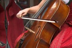 大提琴 免版税库存照片