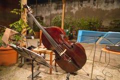 大提琴 免版税库存图片