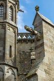 在大教堂圣徒纳泽尔的面貌古怪的人 免版税库存图片