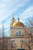 大教堂在利佩茨克州 免版税库存照片