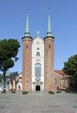 大教堂在格但斯克奥利瓦,波兰 免版税库存照片