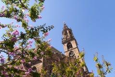 大教堂在波尔查诺南提洛尔意大利 图库摄影