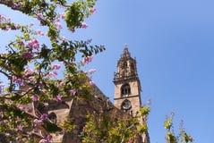 大教堂在波尔查诺南提洛尔意大利 免版税图库摄影