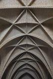 大教堂天花板  免版税库存图片