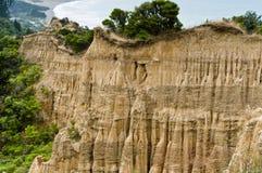 大教堂峭壁海岛新的南西兰 库存图片