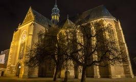 1323年大教堂布尔诺编译了未成年人 免版税库存照片