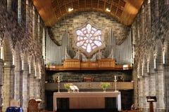 大教堂我们的夫人Assumed到天堂里和圣尼古拉,戈尔韦爱尔兰5 免版税库存图片