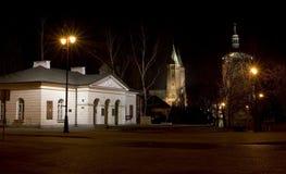 大教堂教会plock波兰 免版税库存照片
