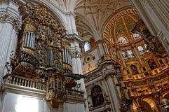 大教堂格拉纳达 免版税库存图片