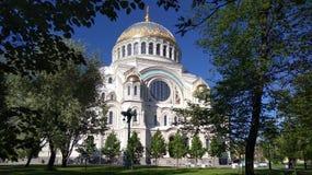 大教堂欧洲意大利比萨罗马式样式托斯卡纳 库存图片