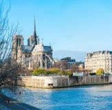 大教堂法国贵妇人notre巴黎 库存照片