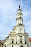 大教堂白色 库存图片