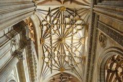 大教堂的内部在萨拉曼卡 免版税库存照片