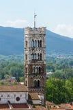 大教堂的塔在卢卡 库存图片