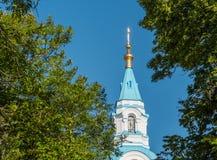 大教堂的钟楼的看法从树的后面 免版税库存照片