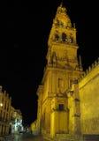 大教堂科多巴前面的极大的清真寺 免版税库存图片