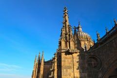 大教堂萨拉曼卡日落 库存照片
