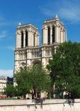 大教堂贵妇人notre巴黎 免版税库存照片