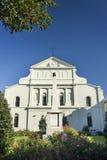 大教堂路易斯・新奥尔良后方st 图库摄影