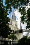 大教堂路易斯st 库存照片