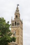 大教堂钟楼在塞维利亚 库存照片