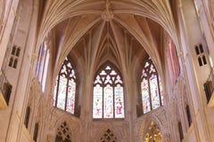 大教堂霍尔Ceiiing和Windows 免版税库存图片