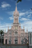 大教堂da nang 免版税图库摄影