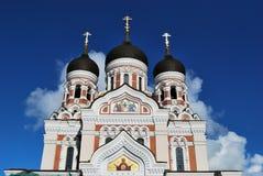 大教堂nevsky塔林 免版税库存照片