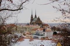 大教堂stPeter和保罗在冬天 免版税库存图片