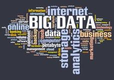 大数据标志 向量例证