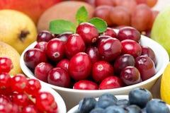 大新鲜的蔓越桔、果子和莓果 库存图片