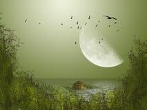 大月亮 库存照片