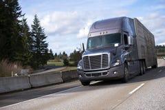 大有拖车的半船具卡车连续高速公路动物的 库存照片