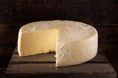 大有机白色乳酪轮子 免版税库存照片