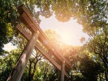 大木Torii日本人寺庙 免版税库存图片